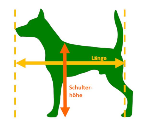 Hundebett Größe ermitteln