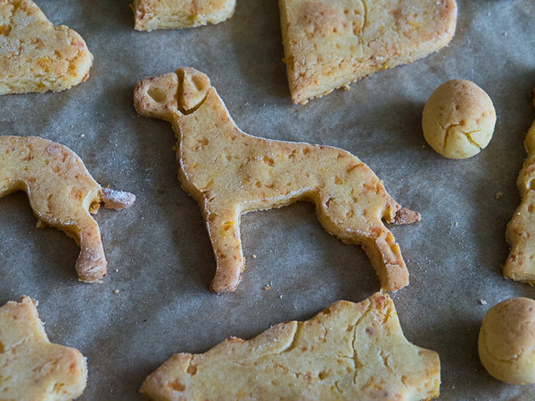 Selbst gemachte Hundekekse