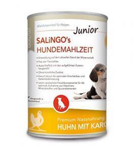 welches.naß.hundefutter.für.senioren.zum.abnehmen.de