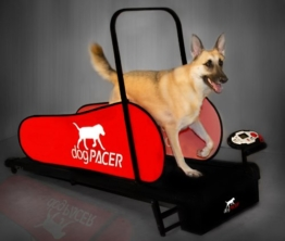 dogPACER LF 3.1 Laufband