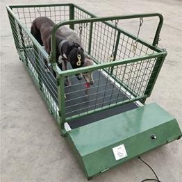 QNMM Fitness Pet Treadmill Indoor Pet, Hundelaufband