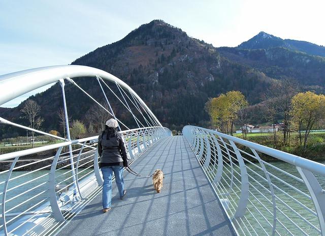 Mit Hund aus Tierheim Gassi gehen