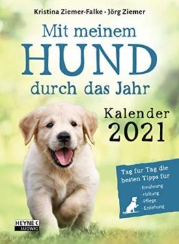 it meinem Hund durchs Jahr – Kalender 2021