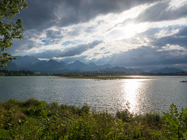 Forgensee - Urlaub mit Hund in Füssen und Umgebung