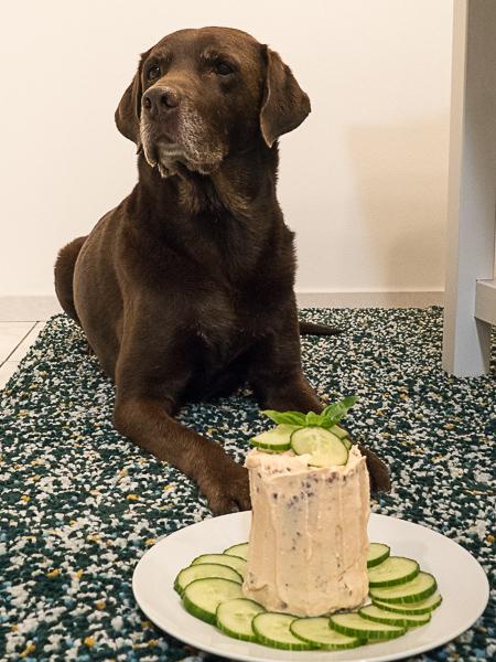 Geburtstagstorte Hund