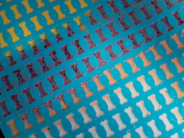 Gummibären für Hunde in der Backmatte