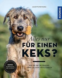 Hundetraining ohne Leckerlies