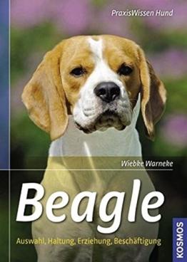 Beagle: Auswahl, Haltung, Erziehung, Beschäftigung