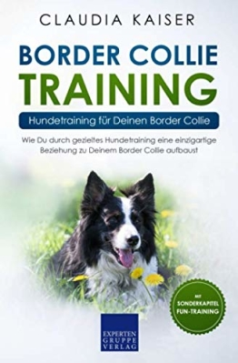 Border Collie Training – Hundetraining für Deinen Border Collie