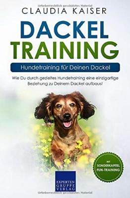 Dackel Training - Hundetraining für Deinen Dackel