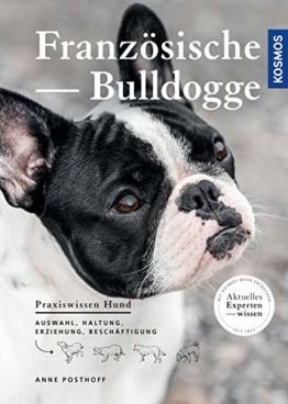 Buch Französische Bulldogge
