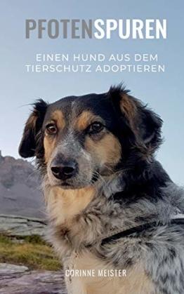 Pfotenspuren: Einen Hund aus dem Tierschutz adoptieren