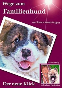 Wege zum Familienhund: Der neue Klick