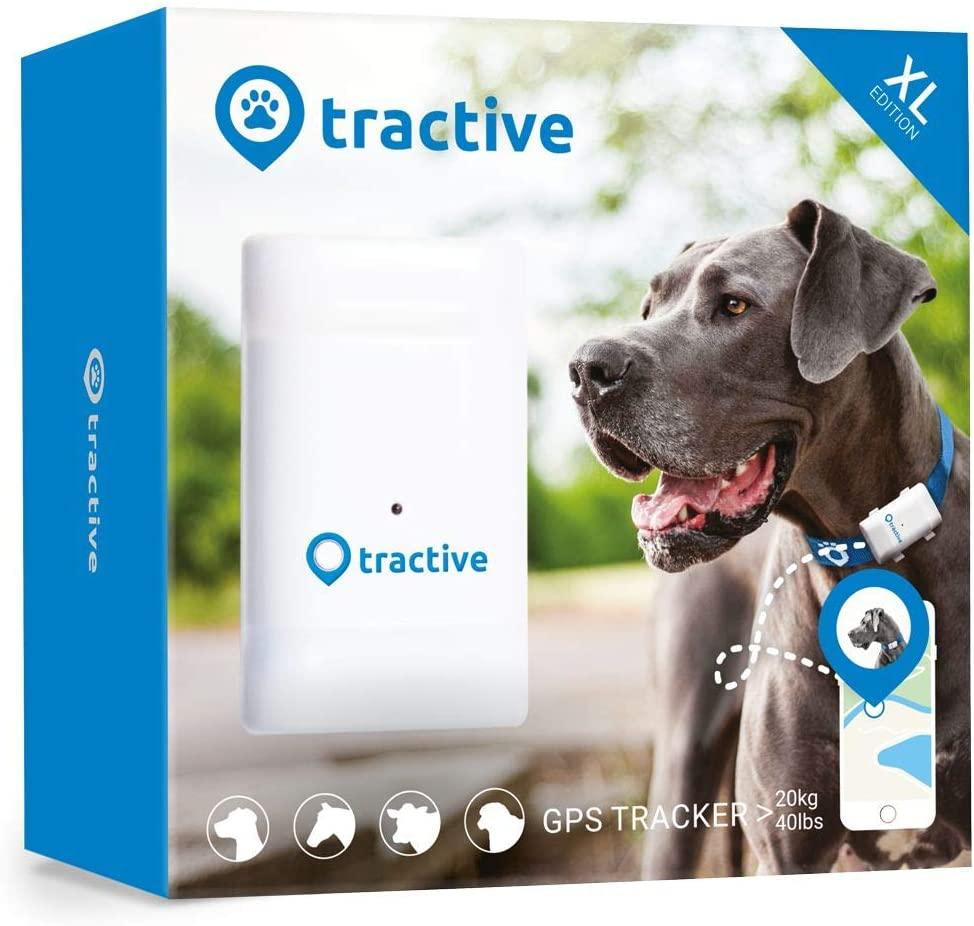 Tractive GPS Tracker für große Hunde