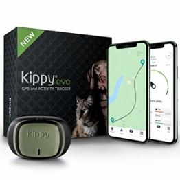 GPS und Activity Monitor für Hunde