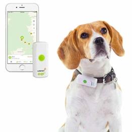 Weenect Dogs 2: Der weltweit kleinste GPS-Tracker für Hunde