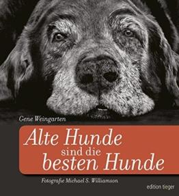 Pflege und Gesundheit alternder Hunde