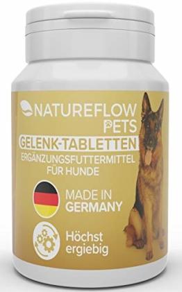 Gelenktabletten für Hunde