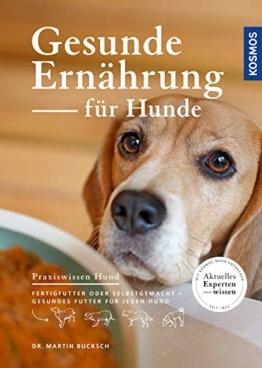 Gesunde Ernährung für Hunde: Fertigfutter oder selbstgemacht