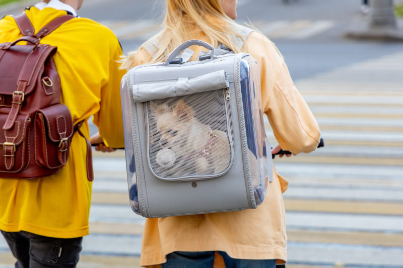 Tragetasche Hund Hunderucksack